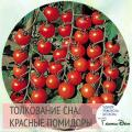 Видеть во сне спелые помидоры