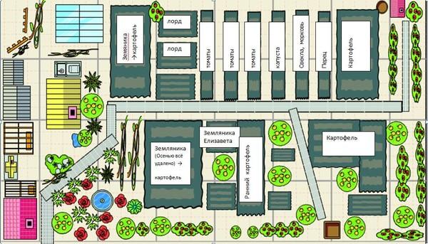 огороде в овощей посадки схема